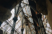 Oxford's Natural History Museum